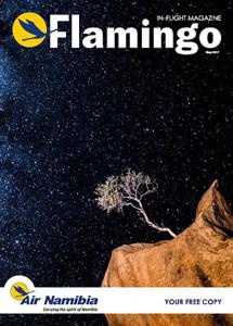 Flamingo-Cover-Page-Dr-Lipkin